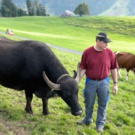 Exploring sustainable foods in Switzerland